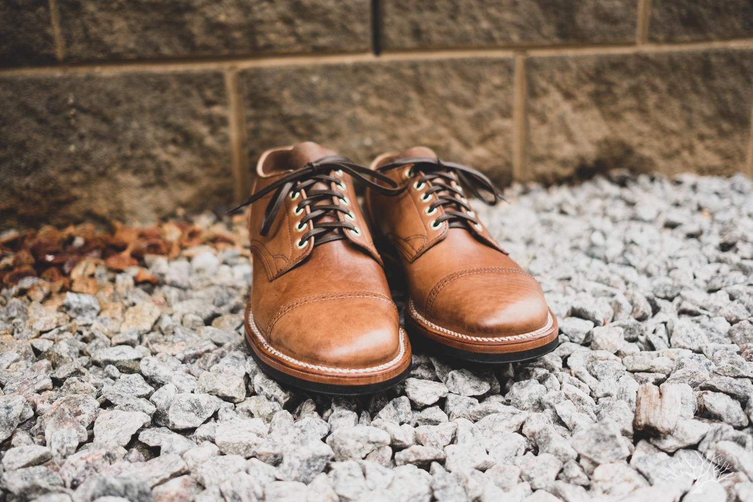 viberg for withered fig maryam crust horsebutt 145 oxford