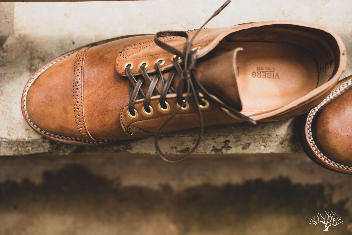 viberg for withered fig franklin II 145 oxford