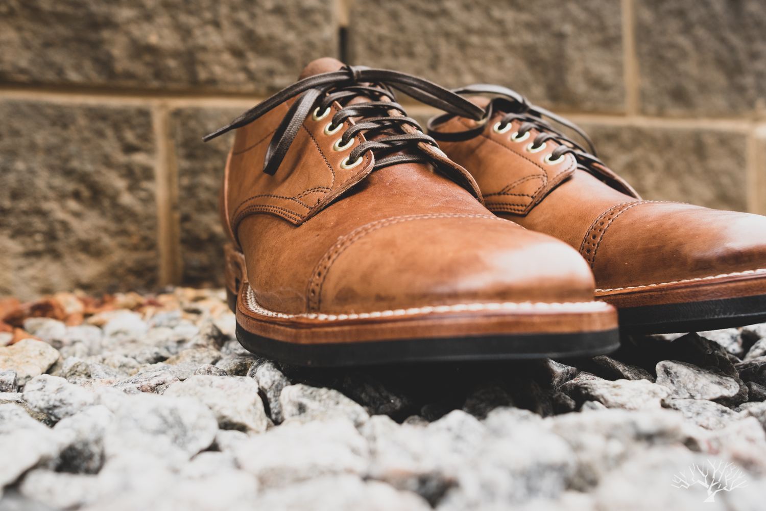 viberg for withered fig maryam crust horsebutt 145 oxford cap toe variation