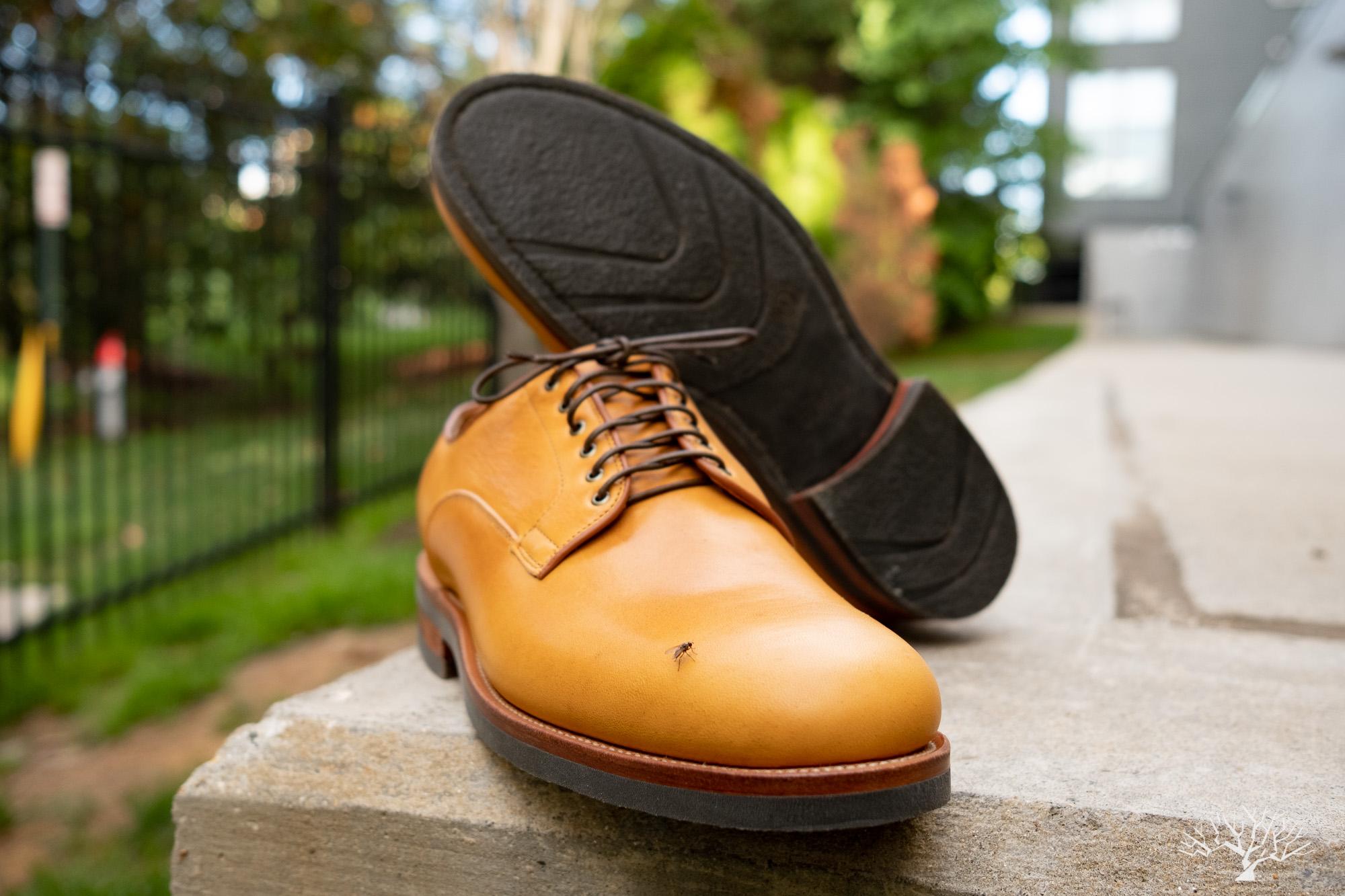 Viberg Derby Shoe Shinki Camel Latigo Horsehide on Lactae Hevea Sole
